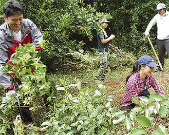 耕作放棄地で草を刈るサントリー労組組合員