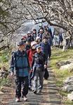 梅の香りを楽しみながらハイキング=2月11日