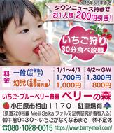 甘いイチゴ食べ放題