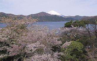 富士見百景にも選定