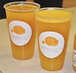 小田原みかんビール