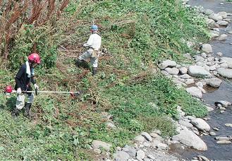 川岸の草を刈る自治会のメンバー