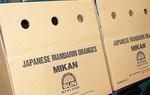 「MIKAN」の文字が印刷された段ボール