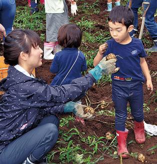 土から芋を掘り出し見つめる子ども