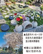 家族納骨墓としての樹木葬