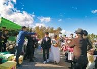 結婚式で再生みかん園PR
