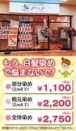ダメージレスオーガニックカラー2750円