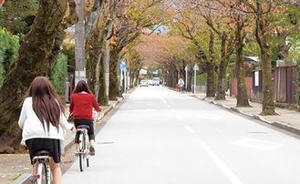 観光スポットを巡るレンタサイクル=市提供
