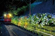 箱根あじさい電車楽しんで