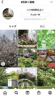 #花咲く箱根(インスタグラム)の画面