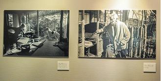 同展の写真(一般財団法人 日本カメラ財団所蔵)