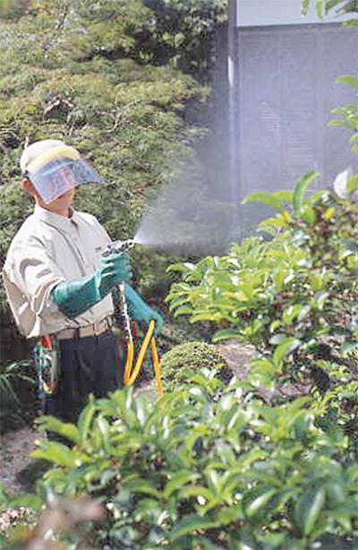 お庭の健康守るなら今!