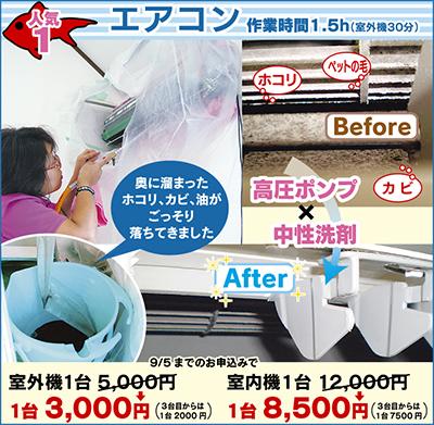 エアコン汚れ 奥まで徹底洗浄