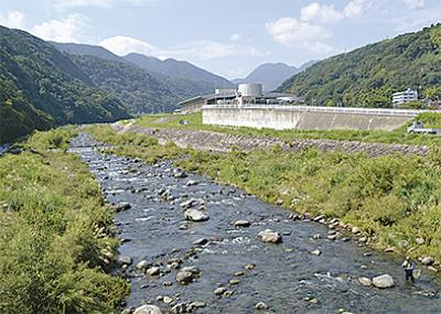 早川でアユ釣り体験