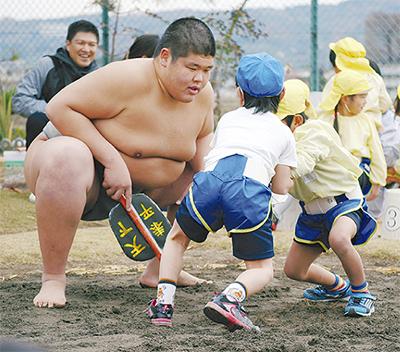 相撲文化学ぶ園児