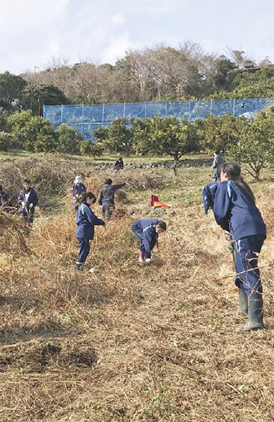 養護学校生が畑を整備