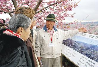 「あそこが二宮尊徳の生家ですよ」と 松田山から見下ろす足柄平野の景観や歴史の話を交えて説明