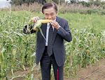現地視察した畑では、もぎたての生食用トウモロコシの試食も