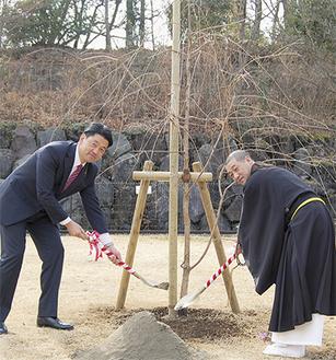 植樹を行う加藤市長(左)と武内住職
