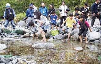 川に入りマスをつかむ参加者