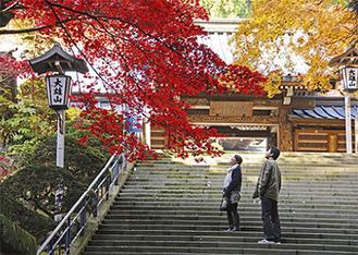 紅葉の名所最乗寺での結婚式