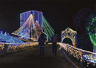18万球のLEDで彩られる=昨年12月に撮影・松田町西平畑公園