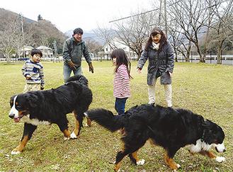 愛犬と遊ぶ鈴木さん夫妻と孫=松田町寄ドッグラン