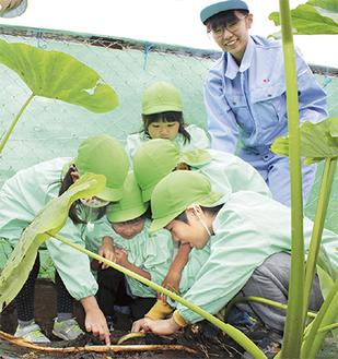 園児を笑顔で見守る檜山さん(右)