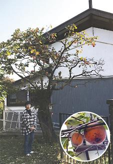 山本さん宅の金手丸=11月7日撮影
