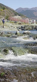 中津川の清流