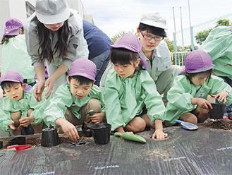吉田島高校の生徒から種芋の植え方を教わって1人1つずつ植えた。