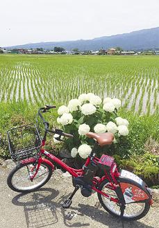 赤色の電動アシスト機能付き自転車