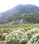 山々を背景に =矢倉沢