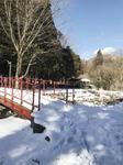 雪が残る滝の入り口