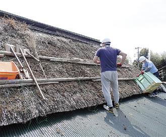 「紋蔵」の茅葺屋根