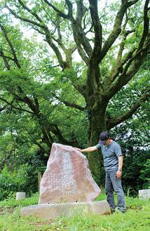 「源頼朝公駒留の地」に建立した石碑