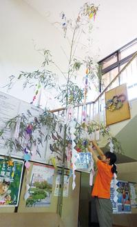 施設内に展示された笹竹=6月29日
