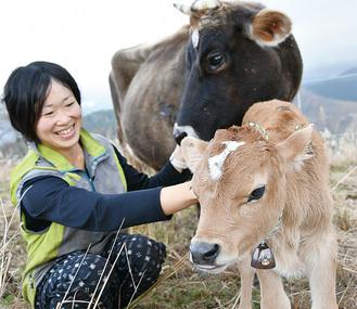 島崎さんと母牛の「たらちゃん」と仔牛名前はまだない、という
