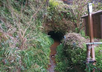 住宅街の中で流れ続ける岩原の湧水