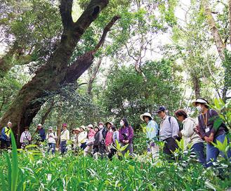 希少な天然林を巡る