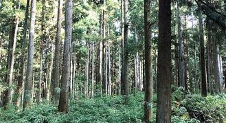 森林を身近なものに
