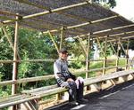 竹のベンチも完成