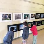 写真を鑑賞する児童