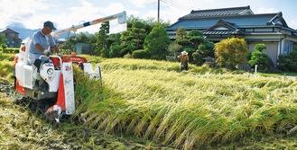 コンバインで稲を刈る生産者=大井町で