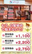 白髪染め1100円〜