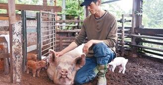 豚を一頭一頭大切に飼育する相原さん