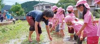 苗の植え方をじっと見つめる園児たち