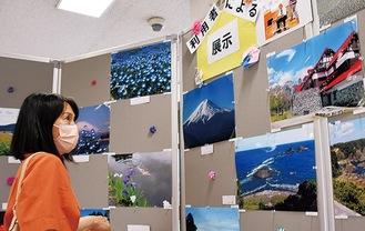 多彩な写真作品が並ぶ会場