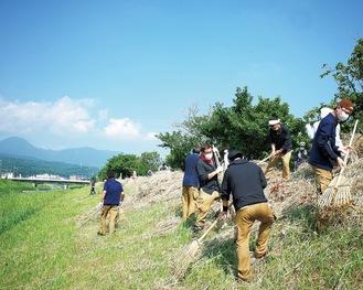 雑草を土手からかき集める会員ら