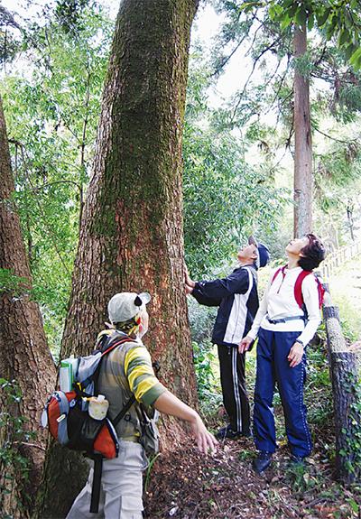 五感を使って森林浴
